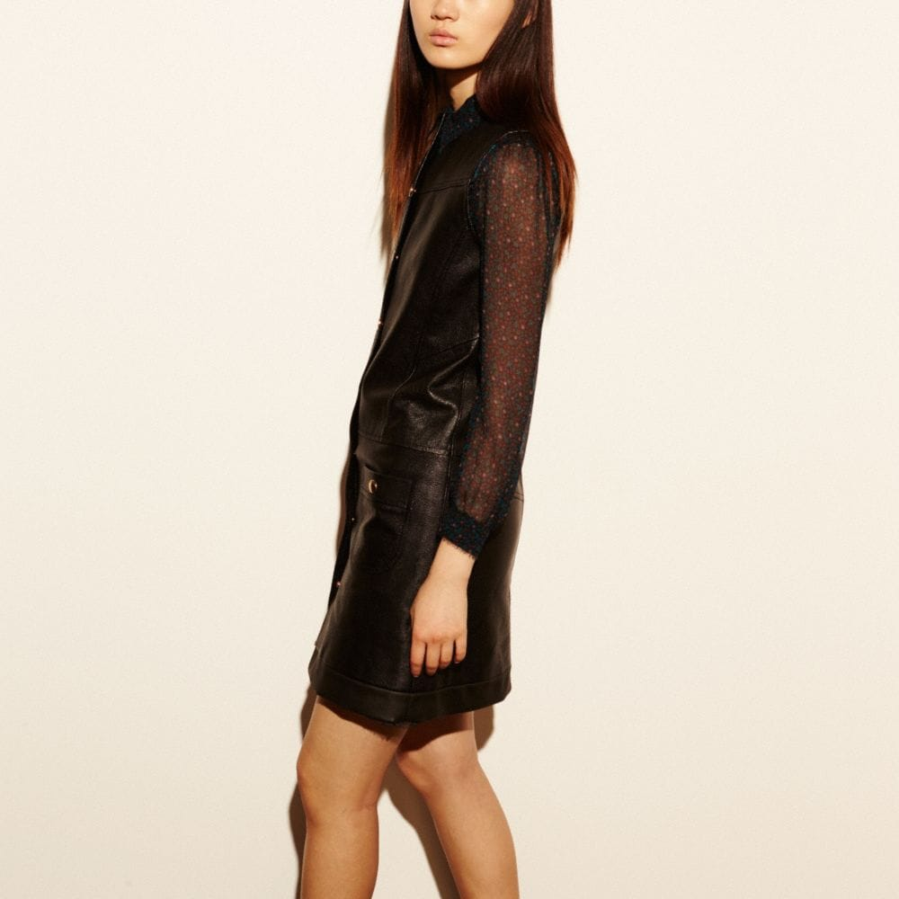 Leather Dress - Alternate View M1