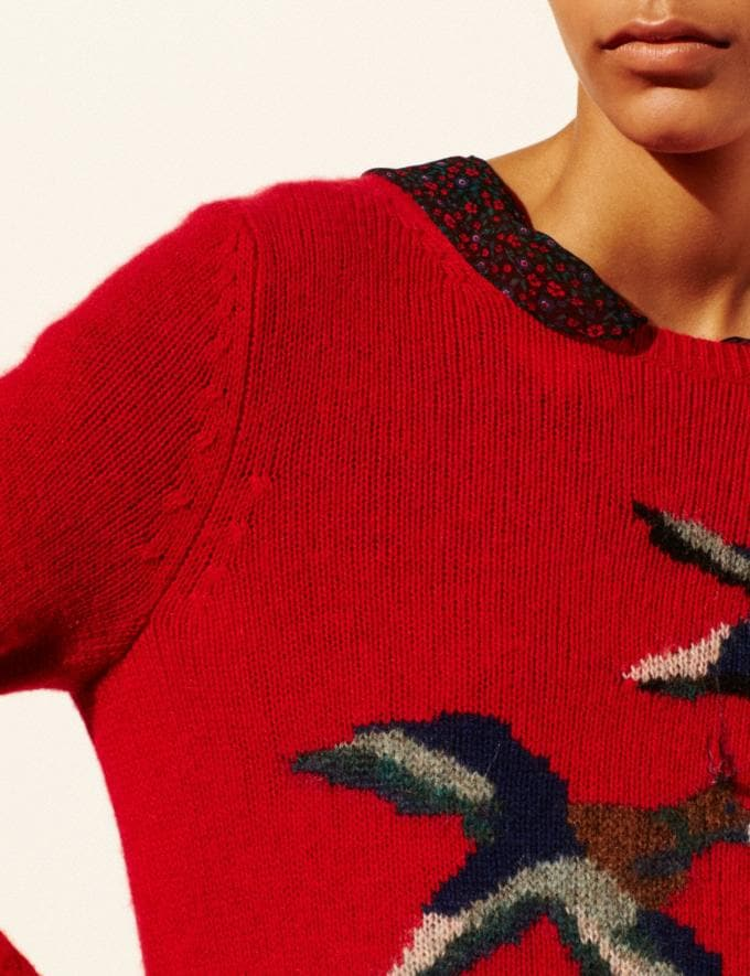 Coach Bird Intarsia Sweater Scarlet Women Ready-to-Wear Tops Alternate View 4