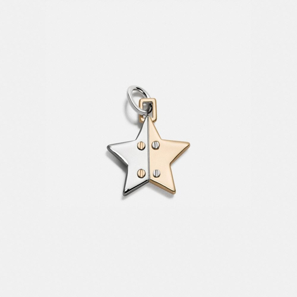 TWO TONE HINGED STAR CHARM