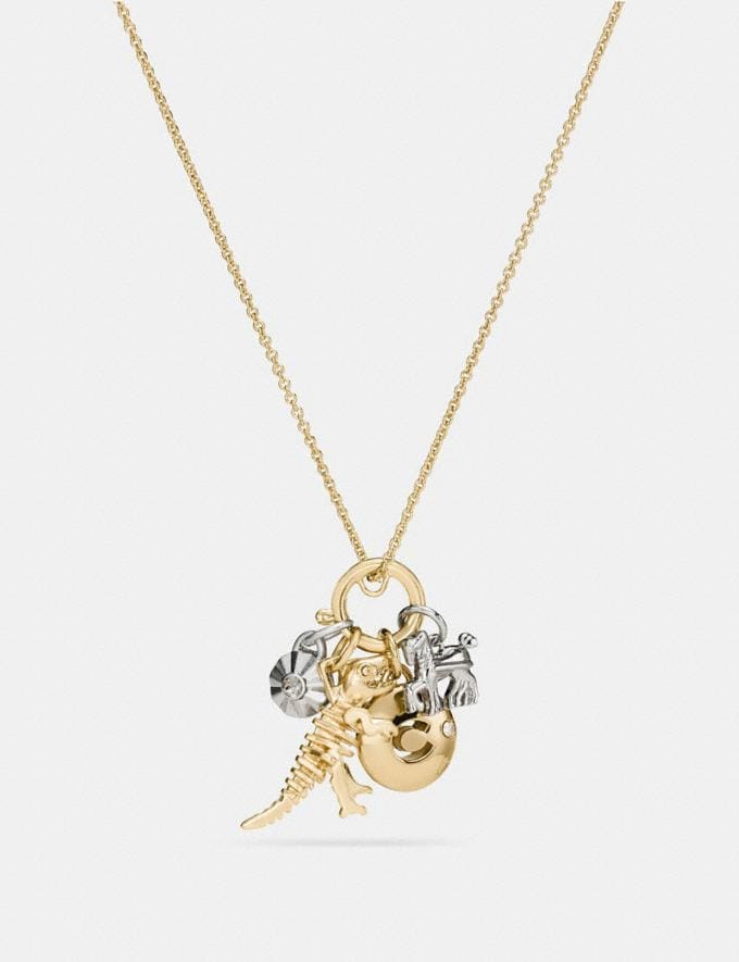 Coach Rexy Skull Charm Set Necklace Silver/Gold Women Accessories Jewelry New Arrivals