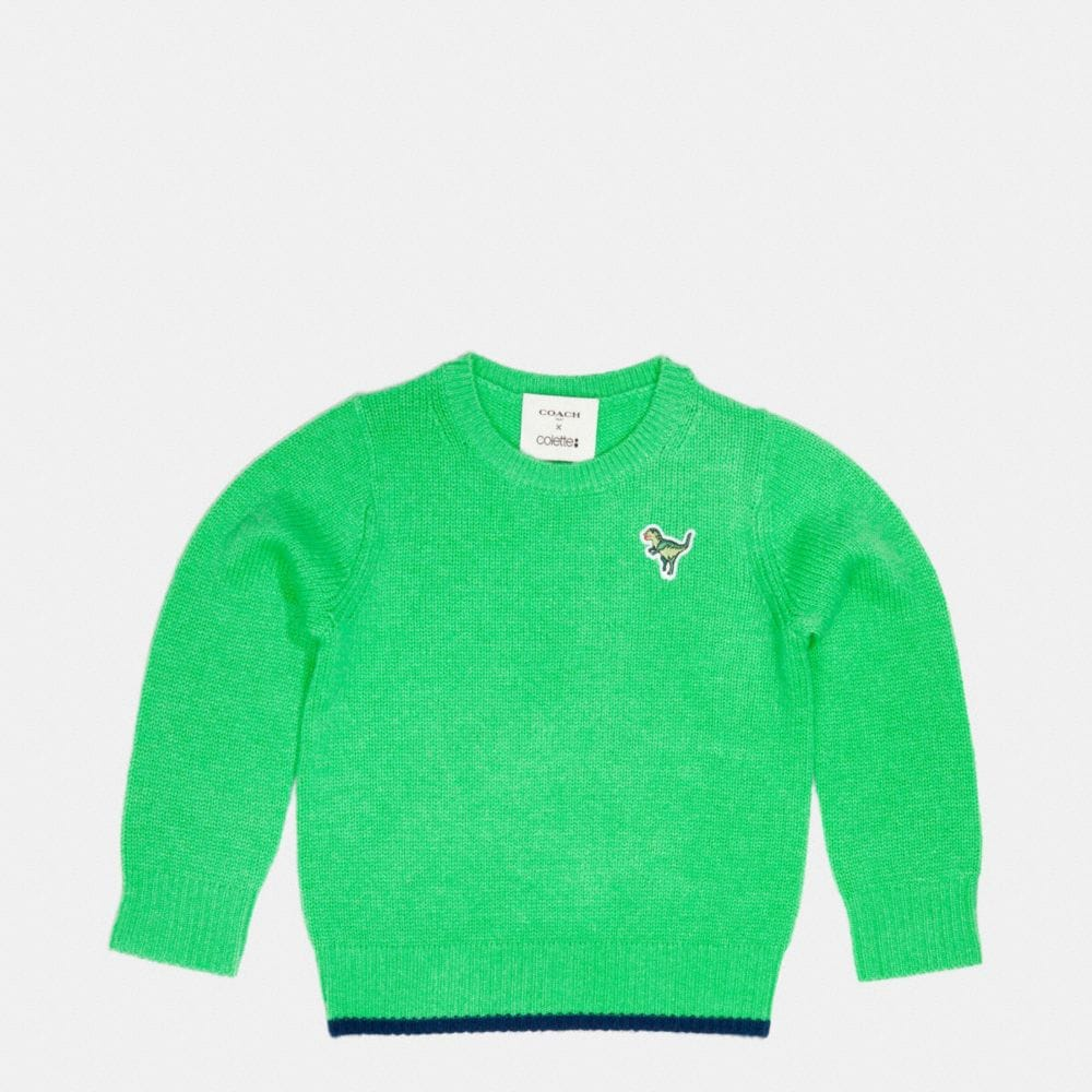 Kids Dino Patch Sweater