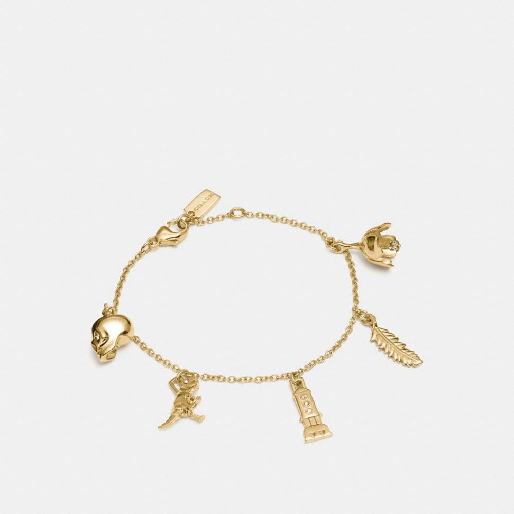 Coach Mini Demi-Fine Charm Mix Bracelet