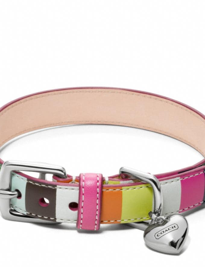Coach Printed Legacy Stripe Collar Multicolor/Silver DEFAULT_CATEGORY