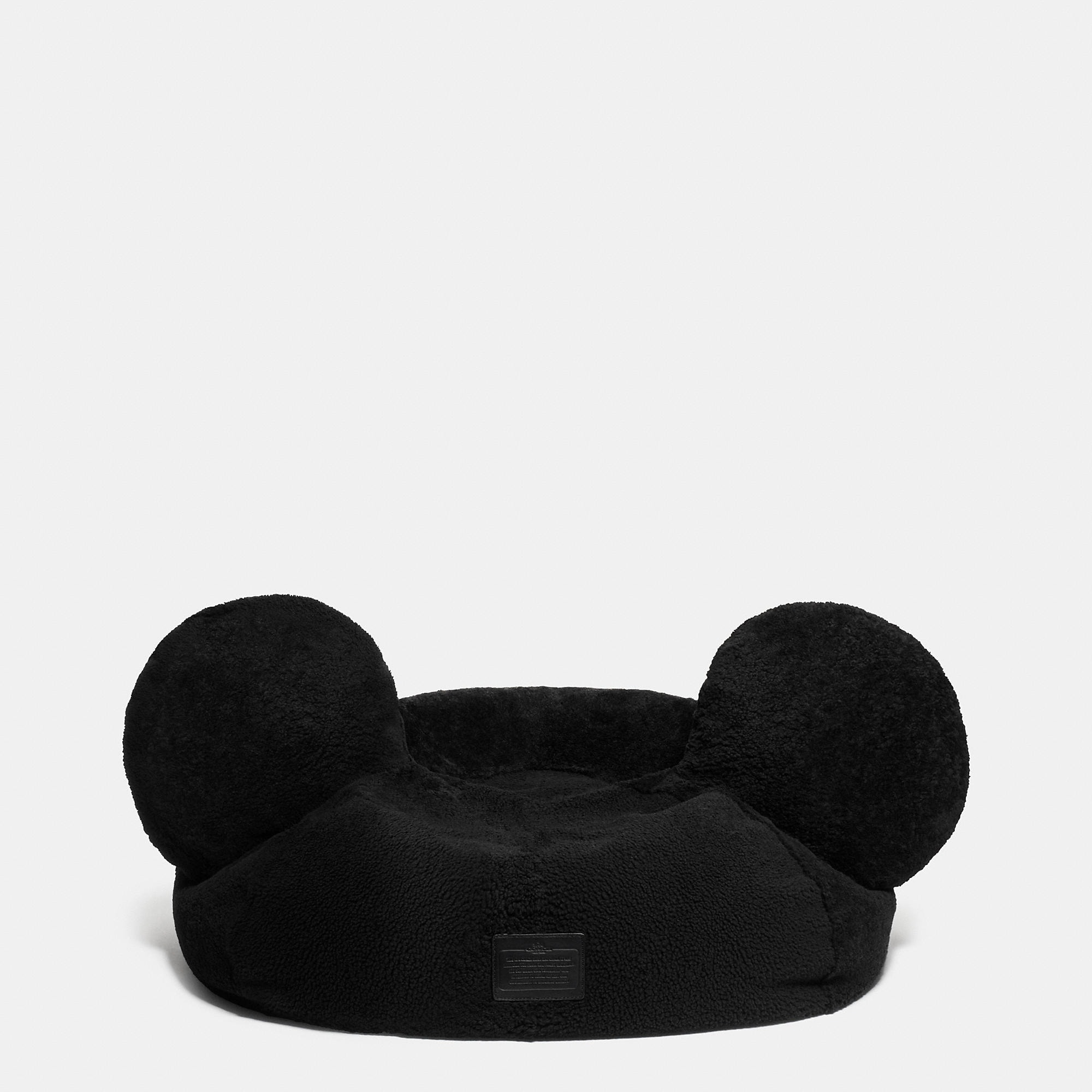 Coach Mickey Bean Bag - Disney