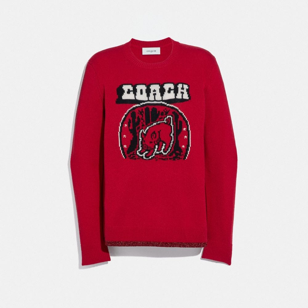 Coach Lunar New Year Sweater
