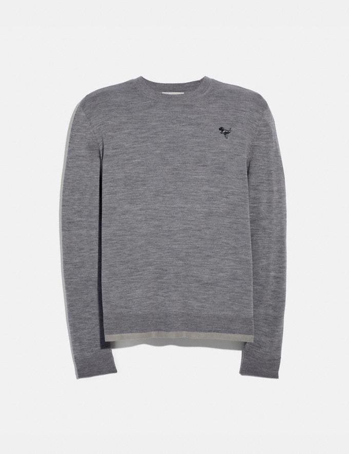 Coach Rexy Patch Crewneck Sweater Grey Men Ready-to-Wear Tops & Bottoms