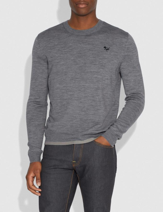 Coach Rexy Patch Crewneck Sweater Grey Men Ready-to-Wear Tops & Bottoms Alternate View 1