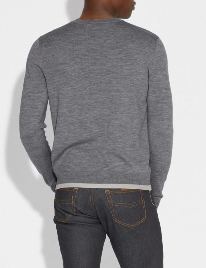 Coach Rexy Patch Crewneck Sweater Grey Men Ready-to-Wear Tops & Bottoms Alternate View 2