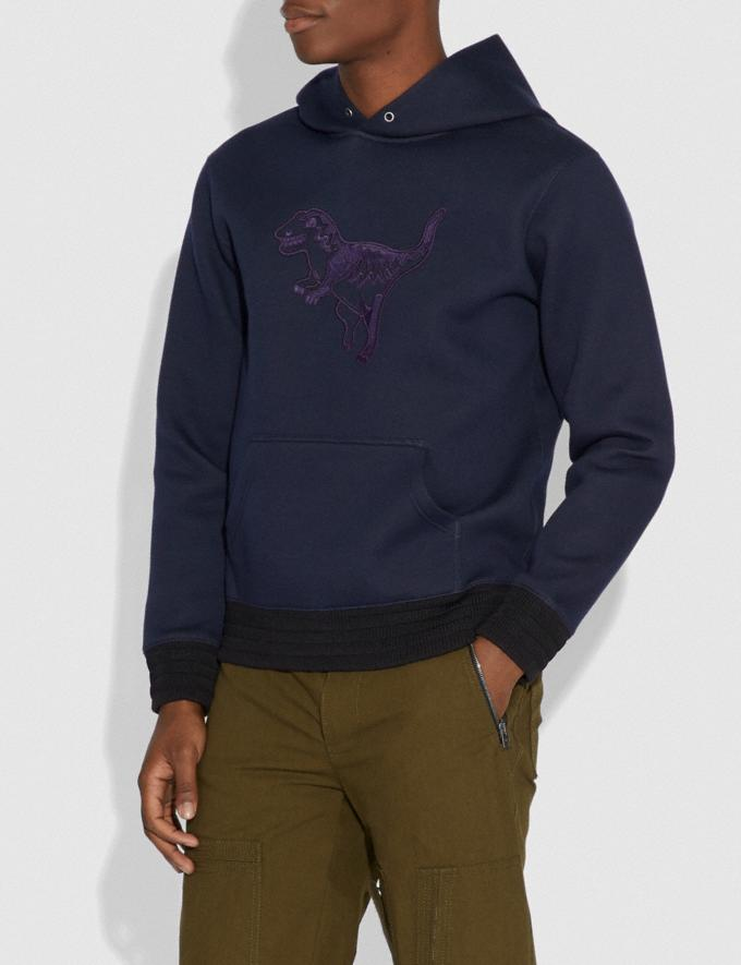 Coach Rexy Hoodie Dark Blue/Aubergine Men Ready-to-Wear Clothing Alternate View 1