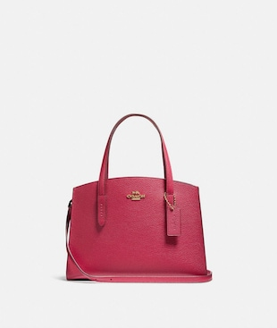 CHARLIE CARRYALL 28 IN COLORBLOCK