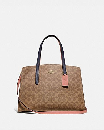 ba62d783a081 CHARLIE CARRYALL IN COLORBLOCK SIGNATURE CANVAS ...