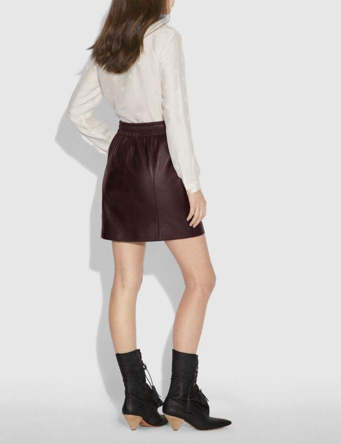 Coach Leather Skirt Walnut Women Ready-to-Wear Alternate View 2