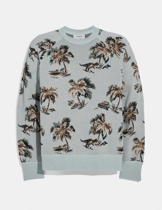Coach Palm Tree Print Jacquard Sweater Blue/Multi Men Ready-to-Wear Tops & Bottoms