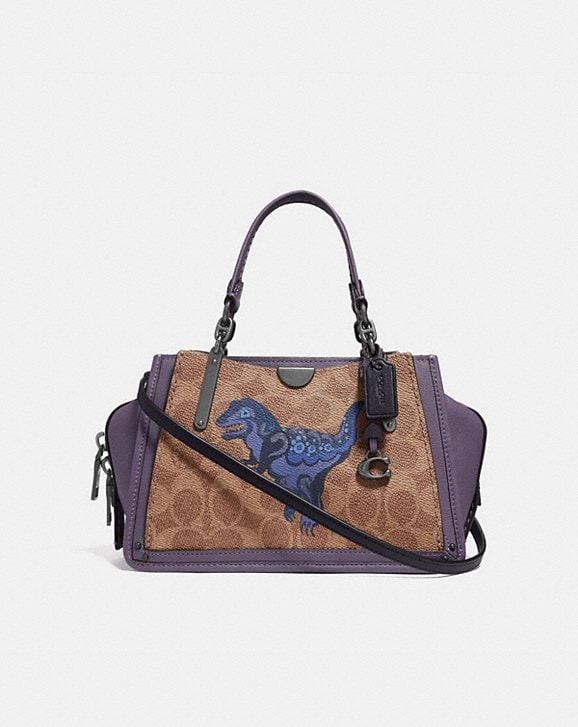 Coach DREAMER 21 IN SIGNATURE CANVAS WITH REXY BY ZHU JINGYI