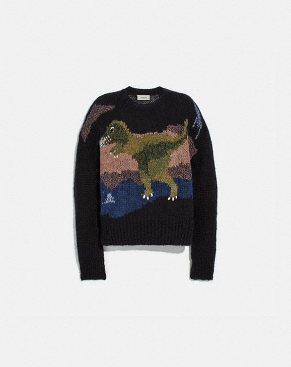 Coach REXY MOHAIR SWEATER