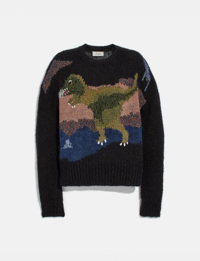 Coach Rexy Mohair Sweater Black New Men's New Arrivals Ready-to-Wear