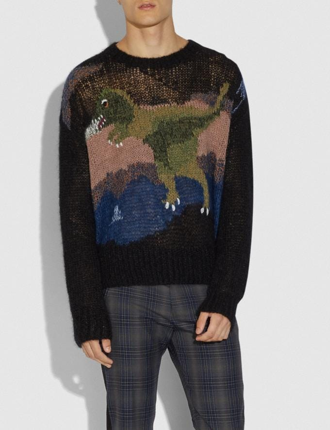 Coach Rexy Mohair Sweater Black New Men's New Arrivals Ready-to-Wear Alternate View 1