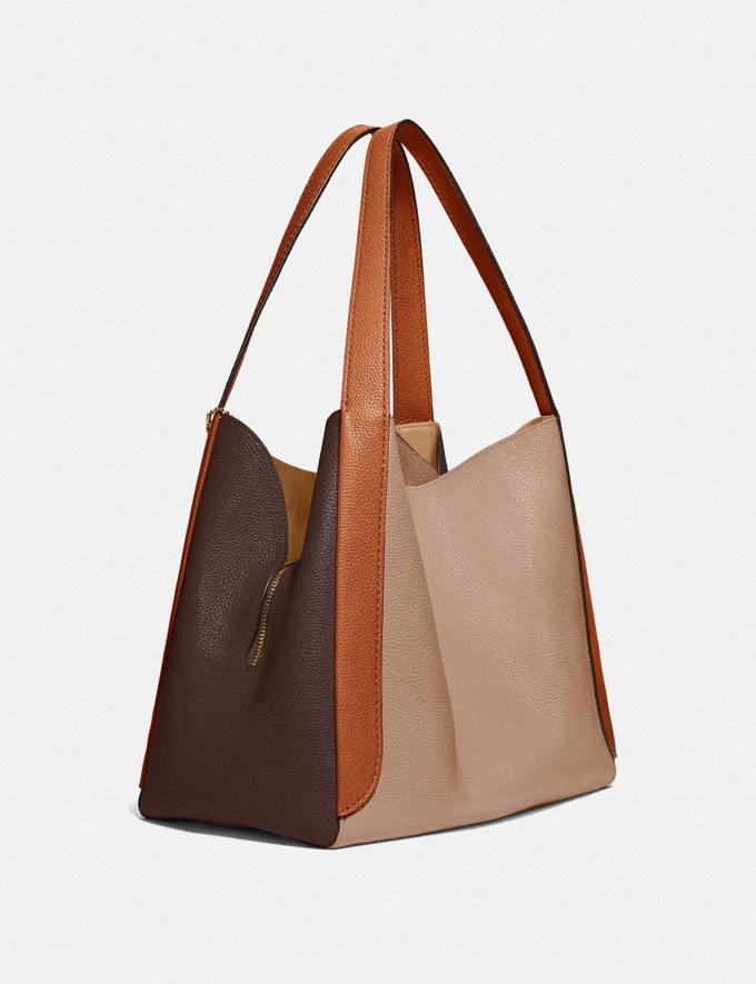 Coach Hadley Hobo in Colorblock Brass/Taupe Ginger Multi  Alternate View 1