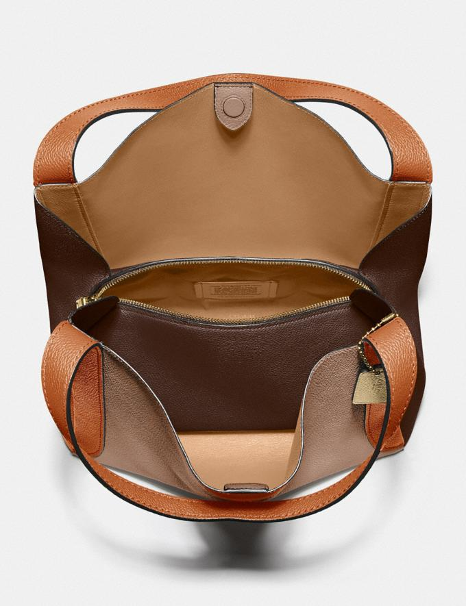 Coach Hadley Hobo in Colorblock Brass/Taupe Ginger Multi  Alternate View 2