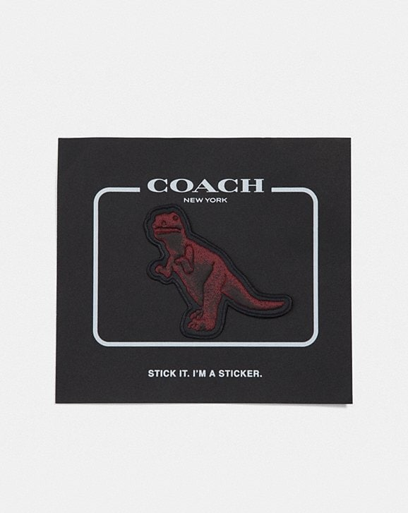 Coach REXY BY SUI JIANGUO STICKER