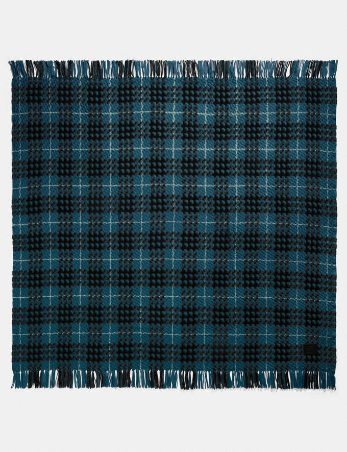 Coach Plaid Print Blanket Scarf Peacock Women Accessories Scarves and Gloves
