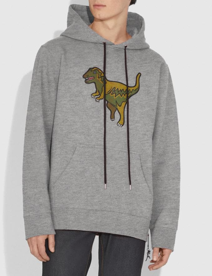 Coach Rexy Hoodie Heather Grey/Heather Grey  Alternate View 1