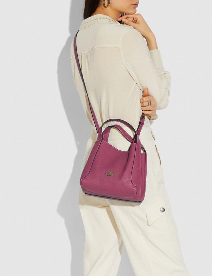 Coach Hadley Hobo 21 Gold/Dusty Pink Women Handbags Crossbody Bags Alternate View 4