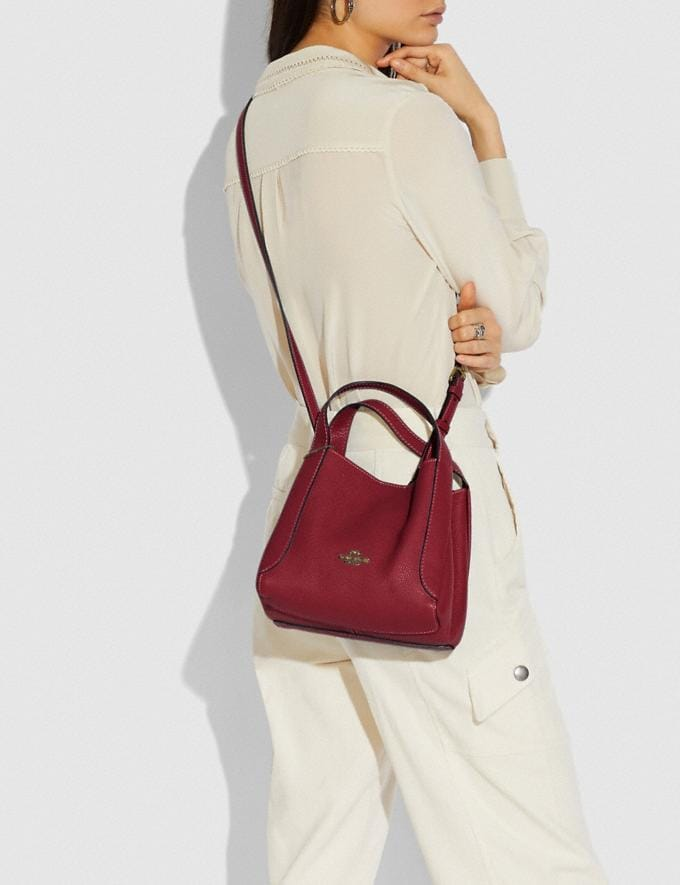 Coach Hadley Hobo 21 Gold/Deep Red New Featured Online-Only Alternate View 4