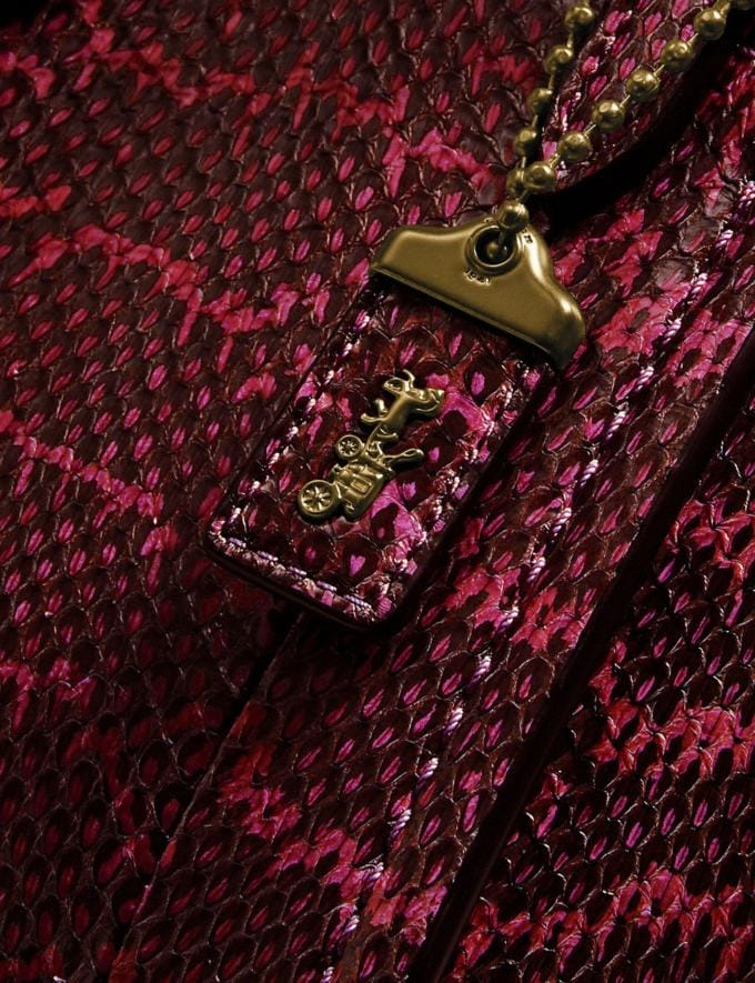 Coach Troupe Tote 16 in Snakeskin Brass/Deep Red DEFAULT_CATEGORY Alternate View 4