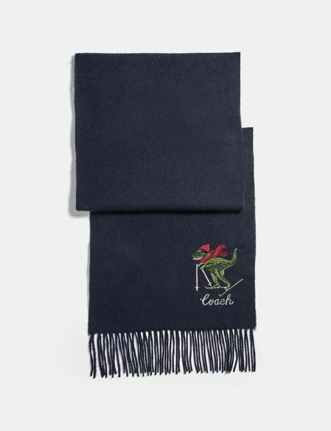 Coach Rexy Embroidered Muffler Stone Blue