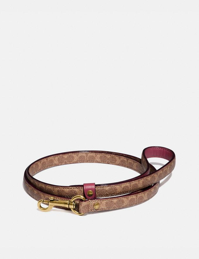 Coach Small Pet Leash in Signature Canvas Saddle/Khaki New Men's New Arrivals Accessories