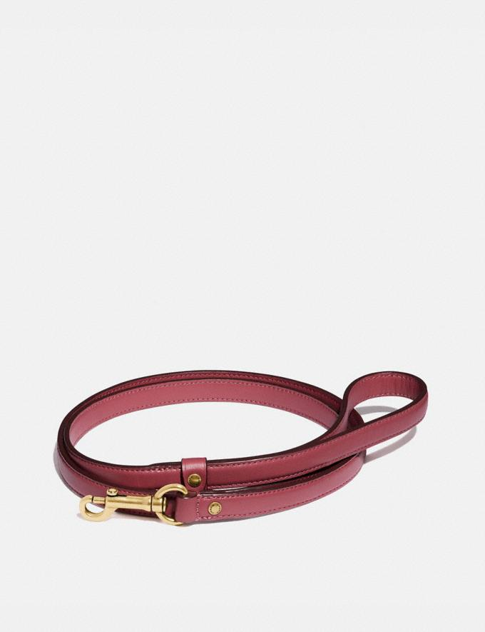 Coach Small Pet Leash Pink New Women's New Arrivals Accessories
