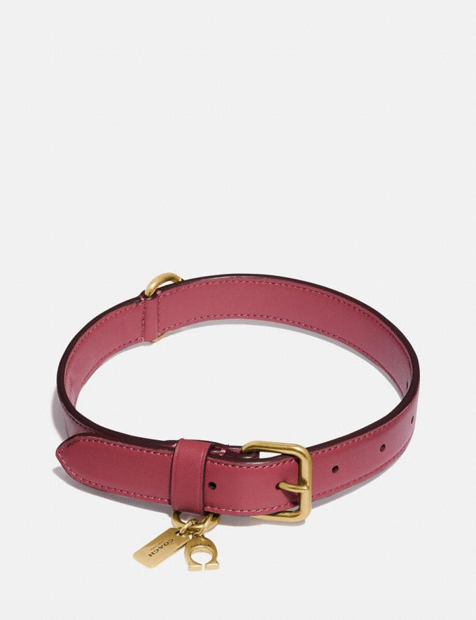Coach Medium/Large Pet Collar Pink Men Accessories