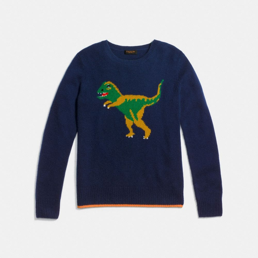 Dinosaur Motif Crewneck Sweater