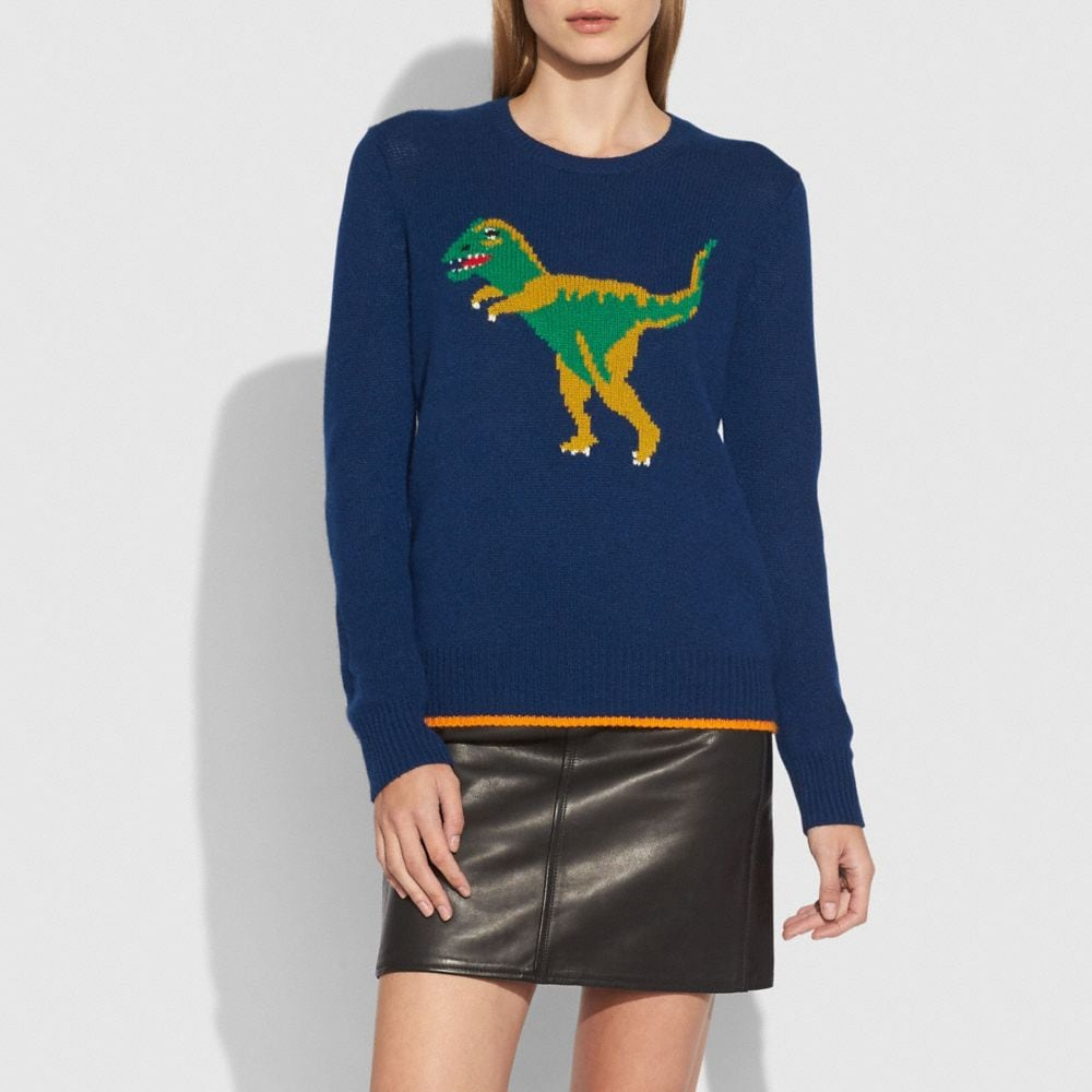 Dinosaur Motif Crewneck Sweater - Alternate View A1