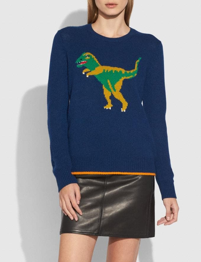 Coach Rexy Crewneck Sweater Multicolor Women Ready-to-Wear Tops Alternate View 1