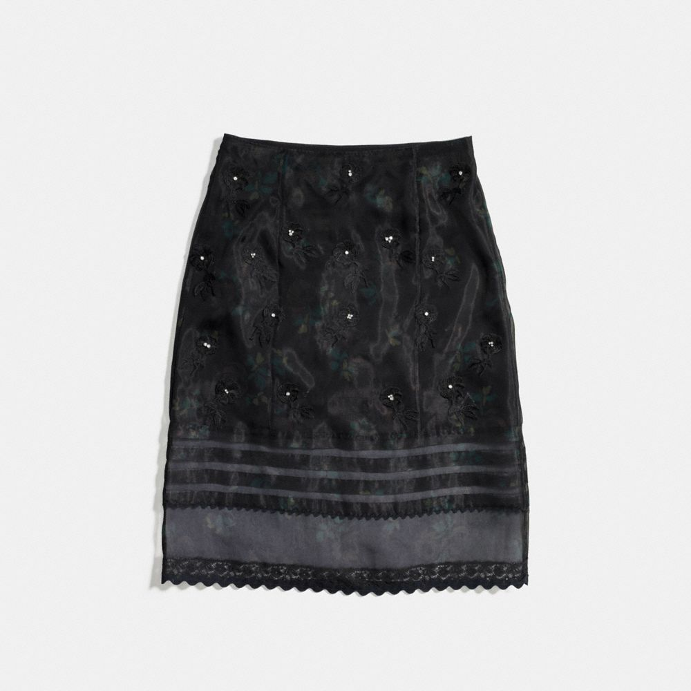 Embroidered Sheer Skirt With Pleats - Alternate View A1