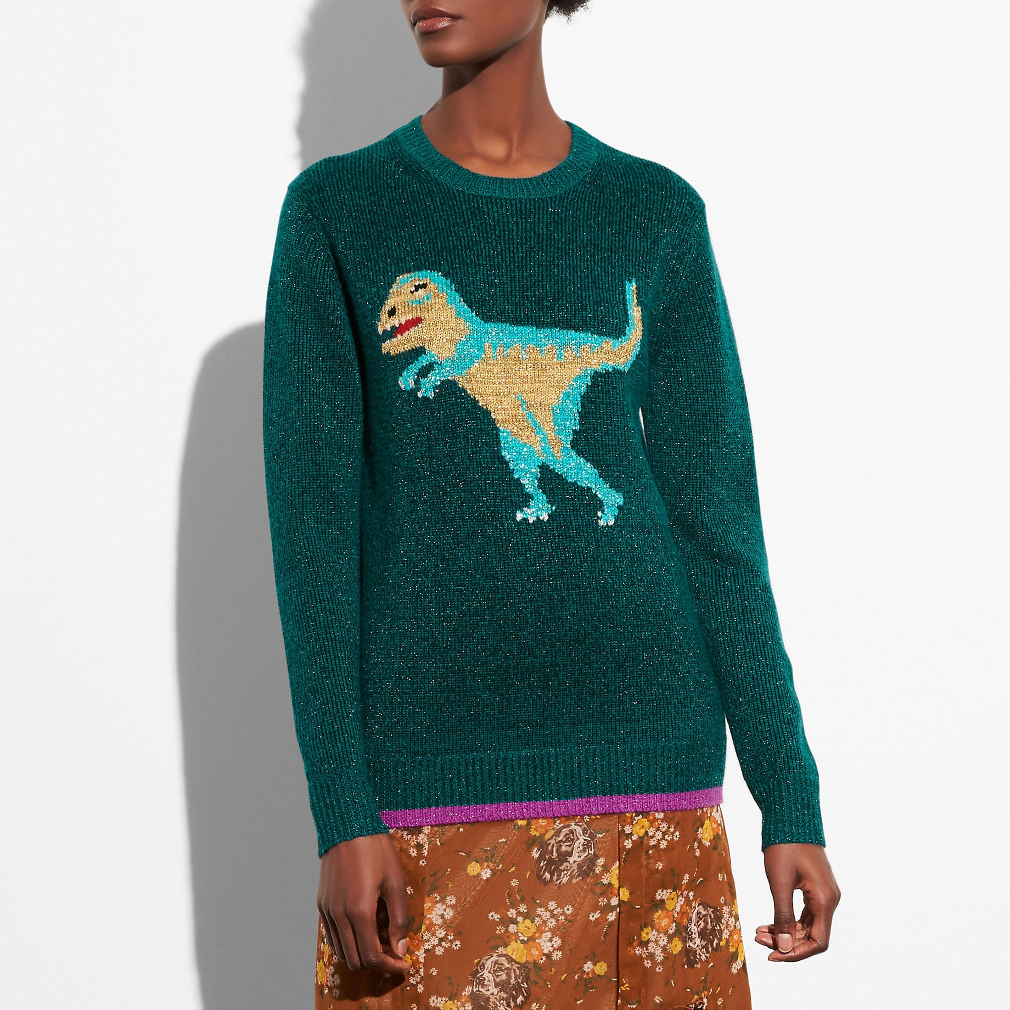 Coach Sparkly Intarsia Rexy Sweater