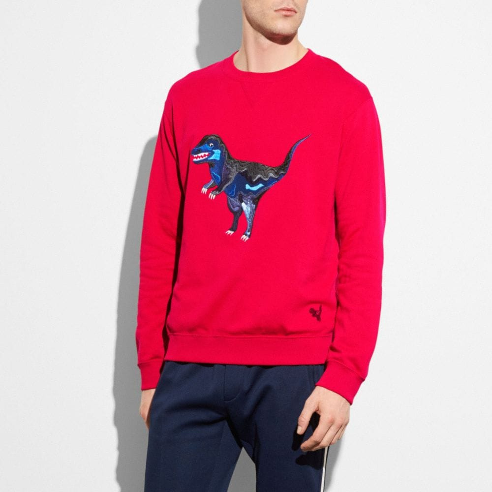 Embroidered Rexy Sweatshirt