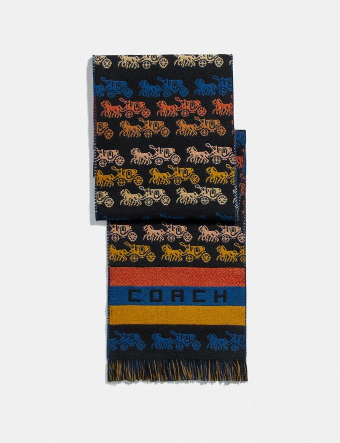 Coach Rainbow Horse and Carriage Long Muffler Multi Women Accessories Hats, Scarves & Gloves
