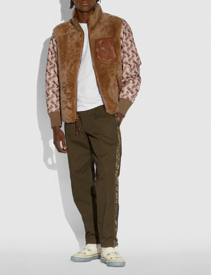 Coach Horse and Carriage Print Shearling Ma-1 Jacket Light Camel SALEDDD Men's Sale Alternate View 1