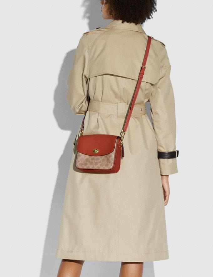 Coach Cassie Crossbody 19 in Signature Canvas Brass/Tan Rust Black Friday Test Alternate View 5