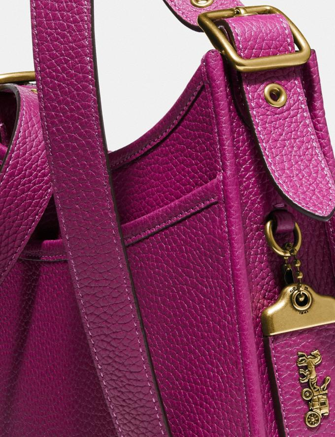 Coach Emery Crossbody 21 Brass/Hibiscus New Women's New Arrivals Collection Alternate View 5