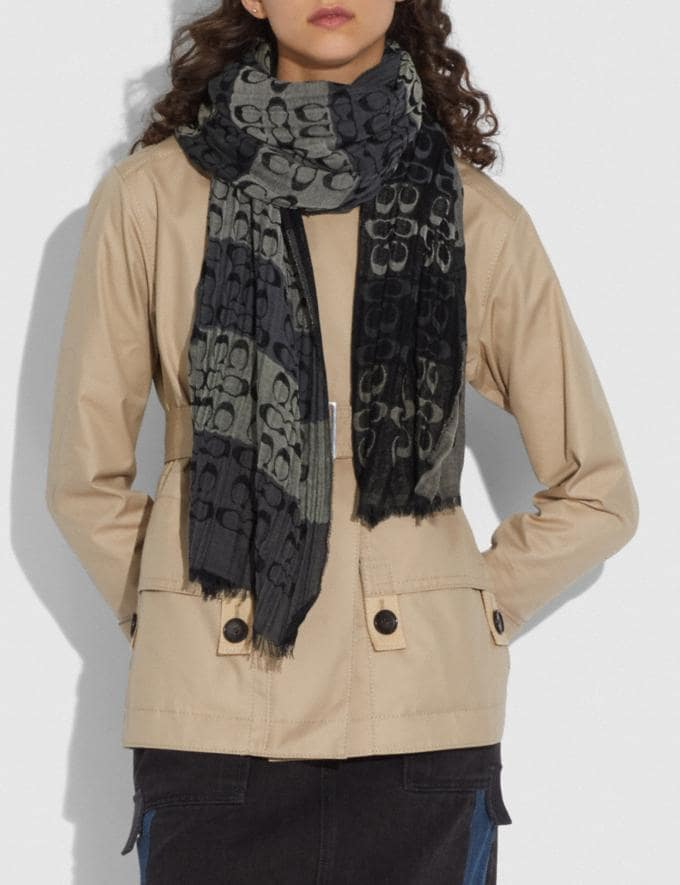 Coach Signature Ombre Stripe Oblong Scarf Black Multi Women Accessories Scarves and Gloves Alternate View 1