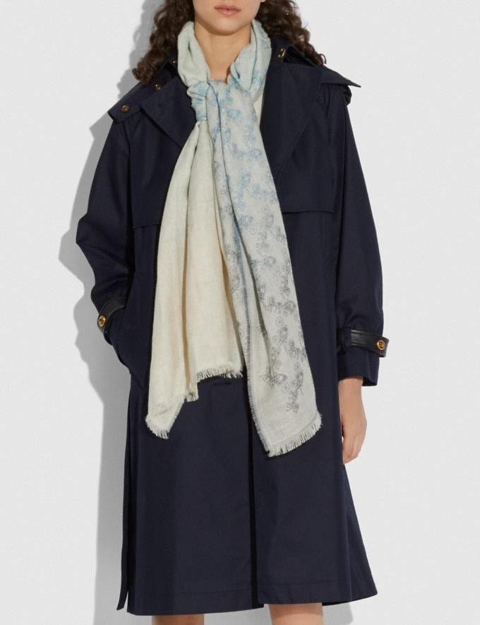 Coach Diagonal Horse and Carriage Ombre Stripe Print Scarf Denim Women Accessories Hats, Scarves & Gloves Alternate View 1