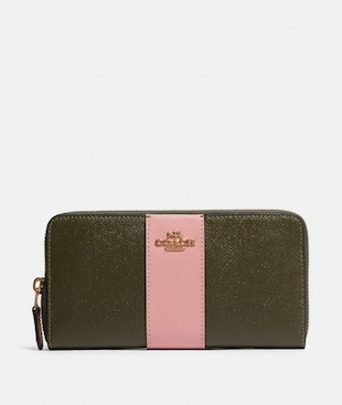 ACCORDION ZIP WALLET IN COLORBLOCK WITH STRIPE