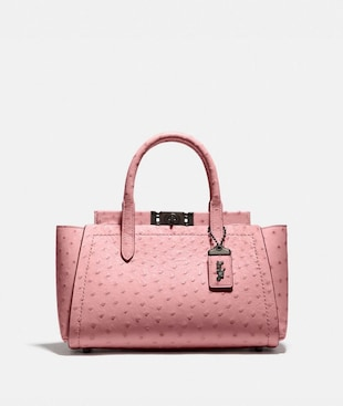 TROUPE CARRYALL IN OSTRICH