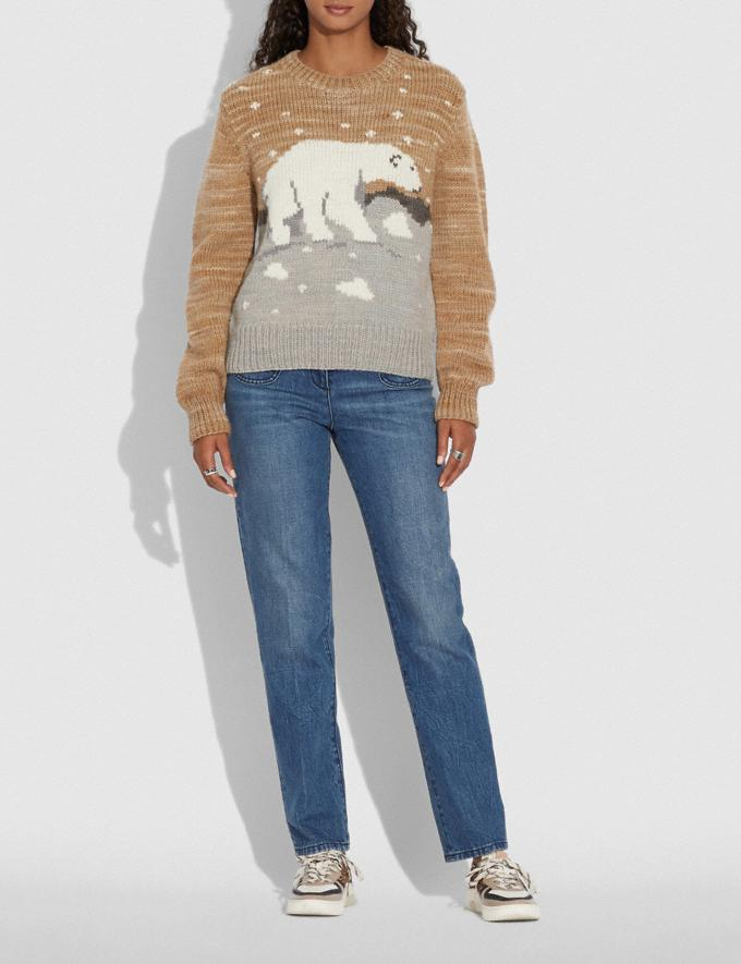 Coach Polar Bear Sweater Beige Women Ready-to-Wear Knitwear & Sweatshirts Alternate View 1