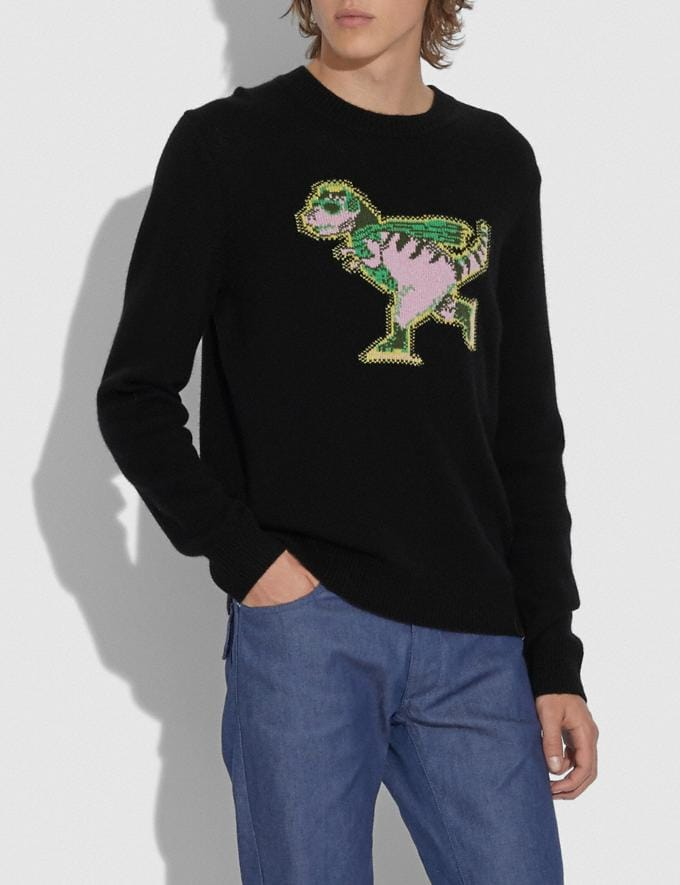 Coach Rexy Intarsia Sweater Black Men Ready-to-Wear Clothing Alternate View 1