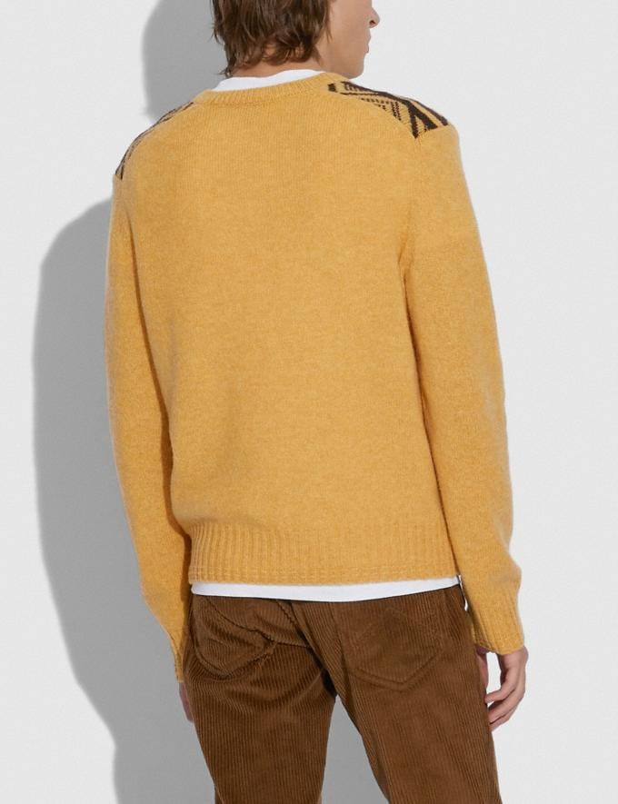 Coach Graphic Jacquard Sweater Yellow Multicolor Men Ready-to-Wear Tops & Bottoms Alternate View 2